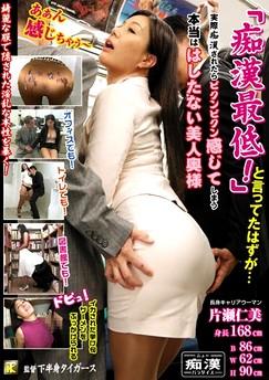 Hitomi Katase